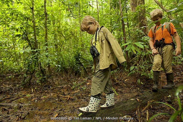 Children, Russell and Jessica Laman hiking in rainforest, Gunung Palung National Park, Borneo. August 2010 Model released.