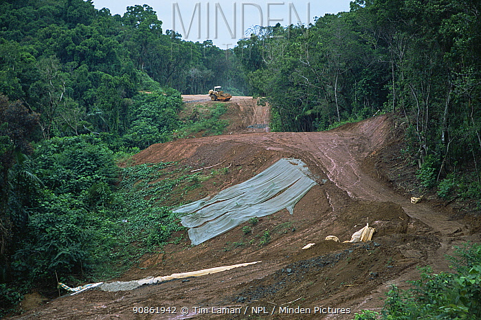 Construction of a new road crossing Babeldaob Island causes major erosion problems in rainforest. Babeldaob Island, Palau, December 2001.
