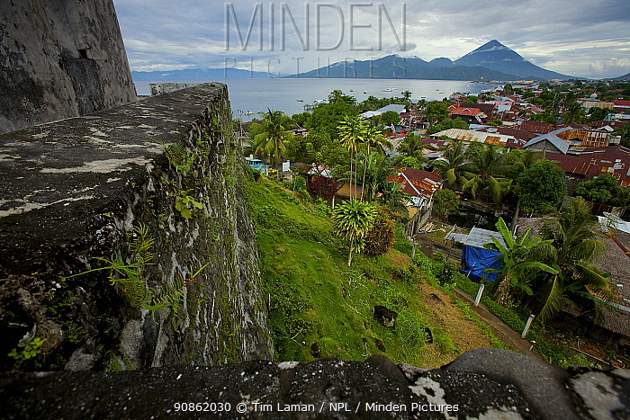 Fort Tolukko, restored Portugese fort dating from 1512 overlooking Ternate harbour. Ternate is the ancient capitol of the spice trade, Maluku Islands, Indonesia 2008