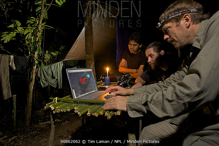 Photographer Tim Laman checking digital pictures on his laptop at his rain forest camp site in the mountains of Batanta Island, whilst Ornithologist Edwin Scholes and