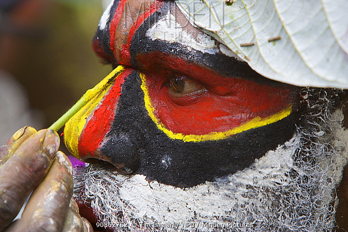Man applying face paints at Payakona Village singsing ceremony. Mount Hagen vicinity in the Western Highlands Province, Papua New Guinea. September 2004