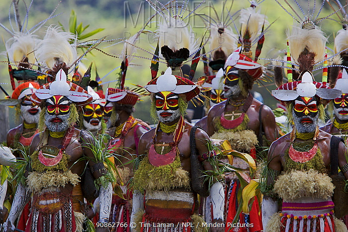 Villagers in traditional costume at Payakona Village singsing ceremony. Mount Hagen vicinity in the Western Highlands Province, Papua New Guinea. September 2004