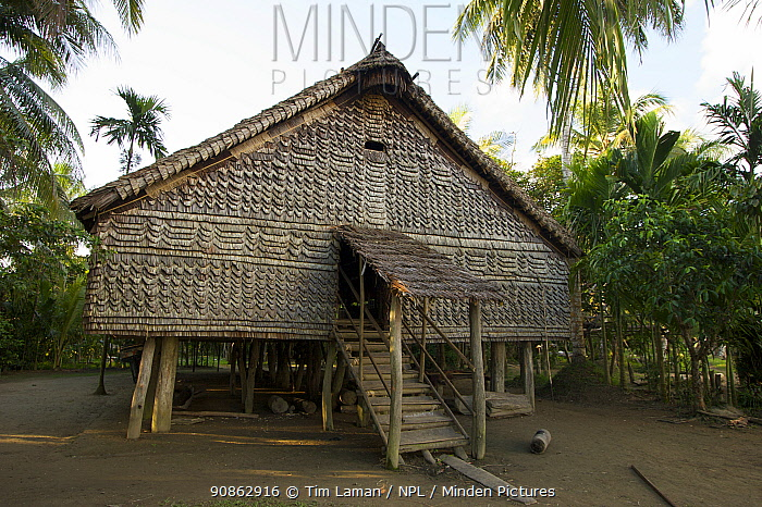 A traditional house in Kundiman Village, on the Karawari River, East Sepik Province, Papua New Guinea, August 2005
