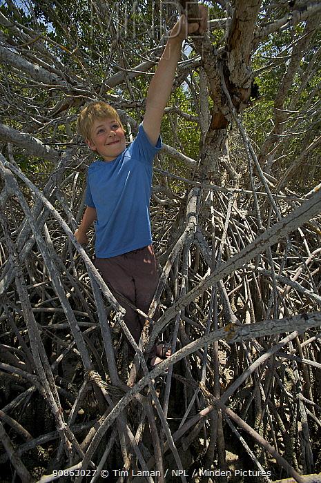 Russell Laman climbing on mangrove roots, Bradley Key, Florida Bay, Everglades National Park, Florida, USA. Model released, April 2008