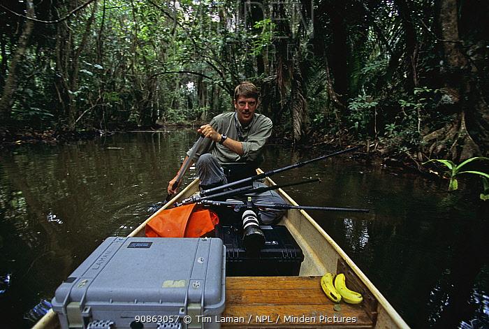 Photographer Tim Laman kayaking with photo equipment down Boom Creek, Belize. Bloodwood trees growing beside stream in mangrove swamp. Model released