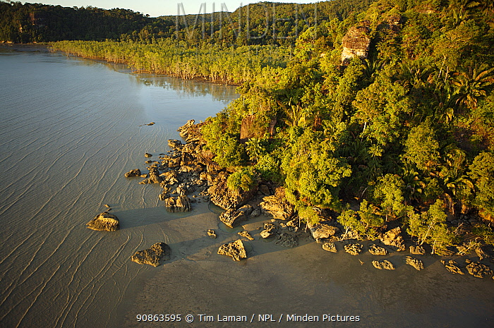 Aerial view of a rocky part of the Bako peninsula coastline covered in rainforest, with mangrove forest in the shallow bay in the background, Bako National Park, Sarawak, Borneo, Malaysia, June 2006