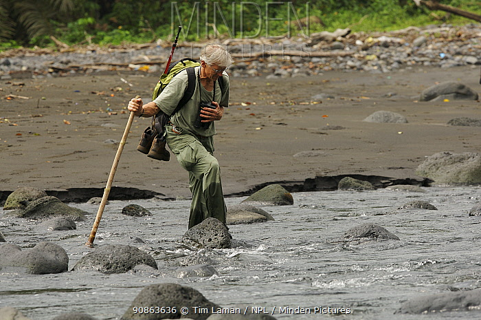 Primatologist, Tom Butynski, wading across the Rio Ole, Bioko Island, Equatorial Guinea, Rapid Assessment Visual Expedition, International League of Conservation Photographers, January 2008. Model released