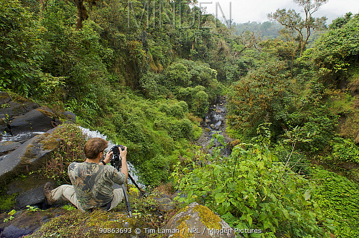 Photographer, Tim Laman, photographing waterfall on the stream in the upper Caldera known as the Rio Santo Antonio, with the caldera wall visible in the distance, Bioko Island, Equatorial Guinea, Rapid Assessment Visual Expedition, International League of Conservation Photographers, January 2008. Model released