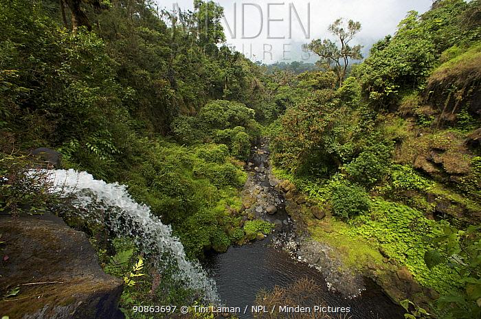 Waterfall on the Rio Santo Antonio in the upper region of the Gran Caldera Volcanica de Luba, Caldera wall is visible in the background, Bioko Island, Equatorial Guinea, January 2008
