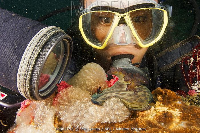 Portrait of woman scubadiver (Apolinar Quinto) gazing at a large nudibranch, Malapascua Island, Visayan Sea, Philippines
