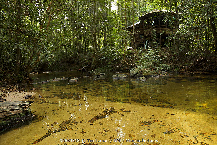 View of research station main camp building in Gunung Palung National park, Borneo, July 2007