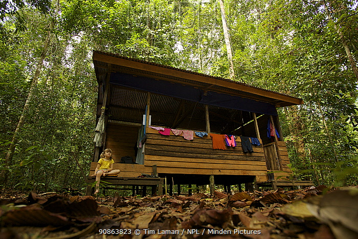 """Young girl (model released) at hut known as the """"beach house"""" at the research station in Gunung Palung NP Borneo, July 2007"""
