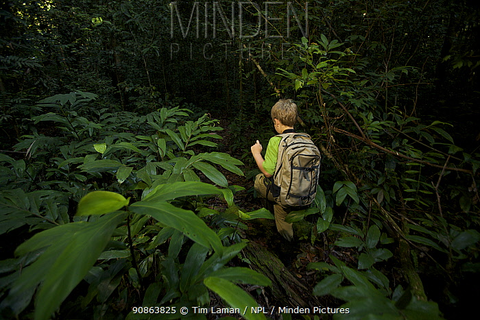 A young boy (model released) aged 9, hiking in the rainforest in Borneo. July 2007