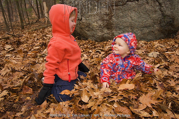 Brother and sister playing in woodland amongst fallen leaves, Lexington, Massachusetts, USA, December 2004, Model released