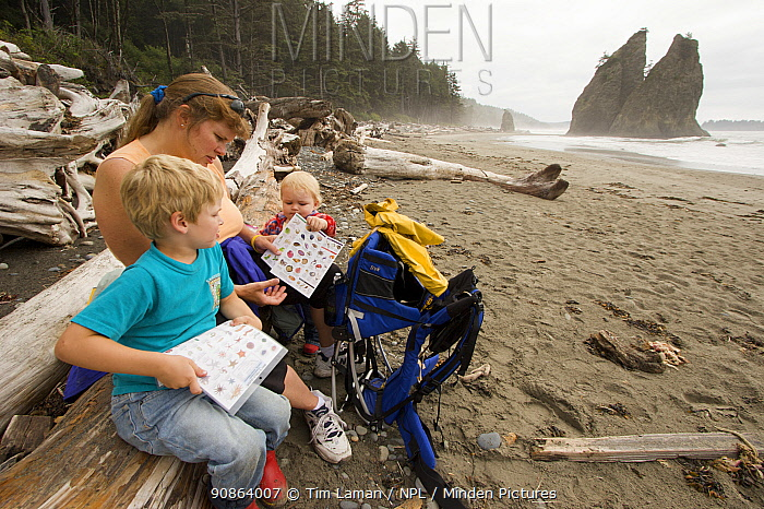 A mother and her children looking at educational material on the beach in Olympic National Park, Washington, USA, August 2005, Model released