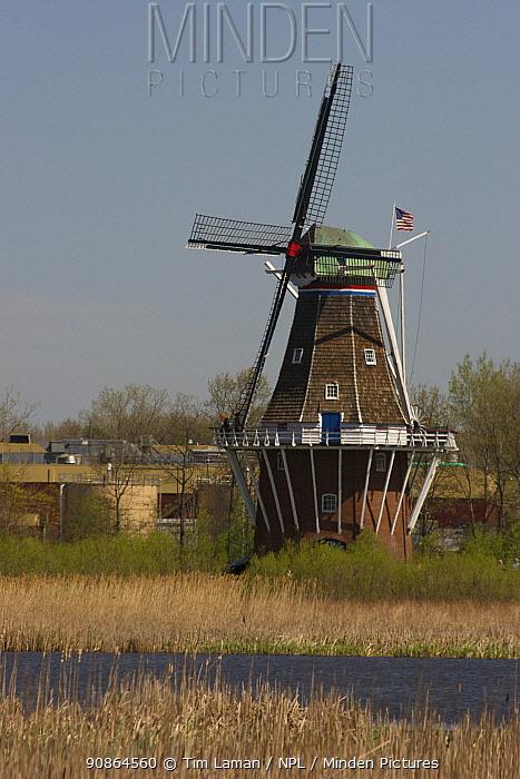 Dutch windmill on marsh, Holland, Michigan, USA, May 2008