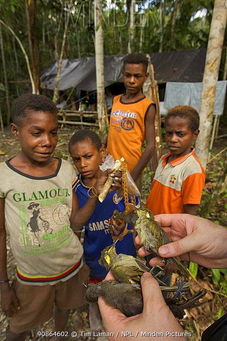 Kwerba village boys bring birds shot by slingshot to LIPI ornithologist. Foja Mountains, Papua, Indonesia, 2008. (taken during Conservation International Rapid Assessment Program expedition)