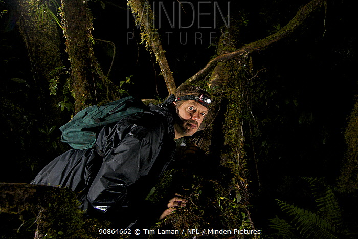 Photographer Tim Laman triggers camera trap to test it. Foja Mountains, Papua, Indonesia, 2008. (taken during Conservation International Rapid Assessment Program expedition)