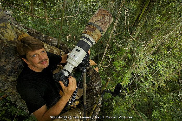 Photographer Tim Laman with camera set up on canopy platform to shoot King Bird of Paradise. Oransbari, Bird's Head Peninsula, New Guinea. August 2009