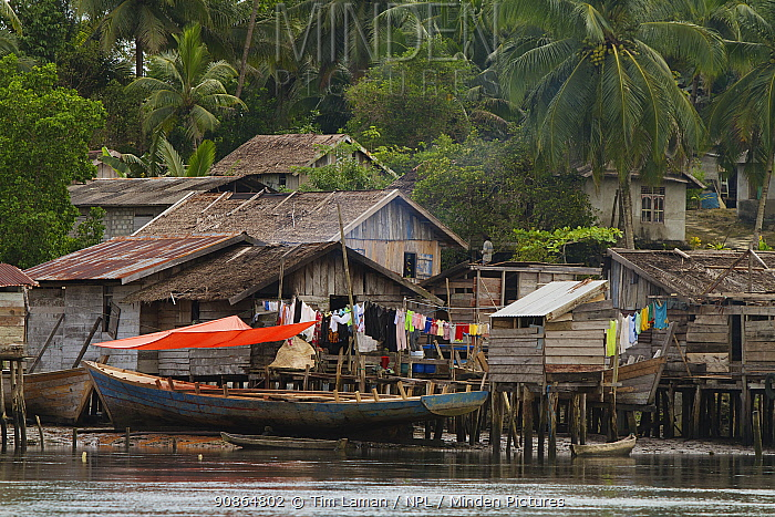 Village along Manumbai Channel, Aru Islands. Indonesia, September 2010
