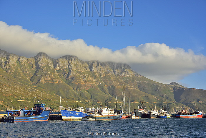 Hout Bay's harbour on the west side of the Cape Peninsula, Western Cape, South Africa. Atlantic Ocean.