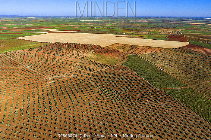 Aerial view of crops and landscape, around Ribera del Fresno, Province of Badajoz, Extremadura, Spain, May 2019.
