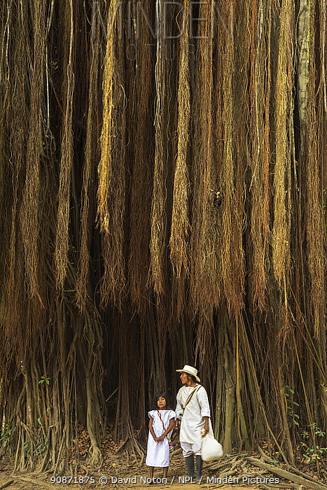 Mother and child beneath a giant fig tree in the Quebrada Valencia, Magdalena, Colombia