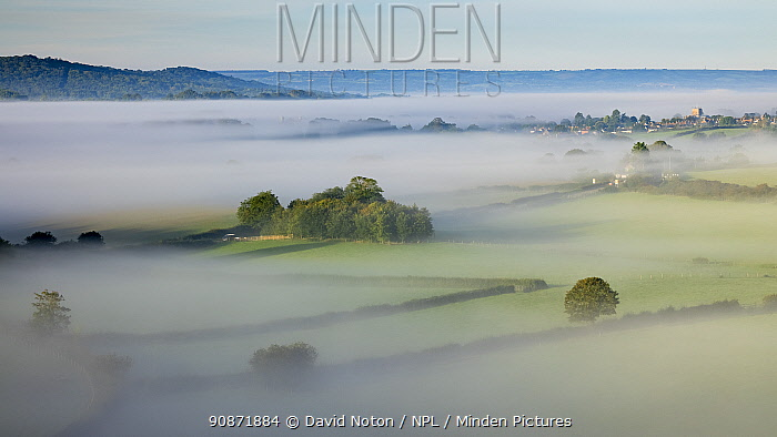 Sherborne Abbey rising out of a sea of mist, Dorset, England, UK. September 2020.