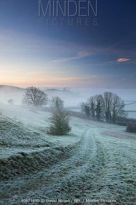 Frosty, misty dawn on Vartenham Hill, Milborne Port, Somerset, England, UK. January 2018.