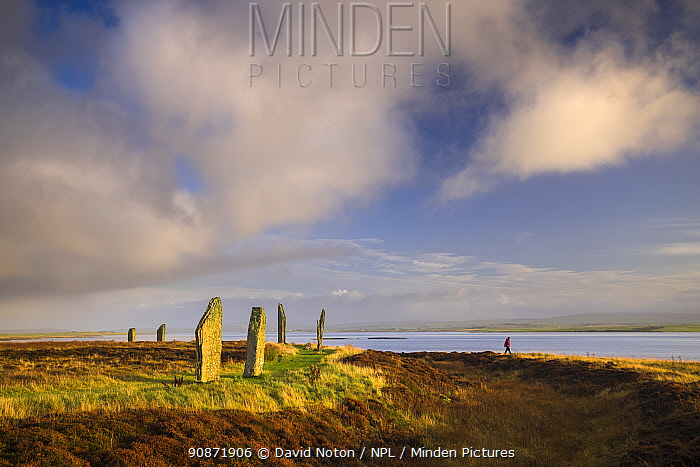 Woman walking around the Ring of Brodgar, Mainland, Orkney Isles, Scotland. October 2020.