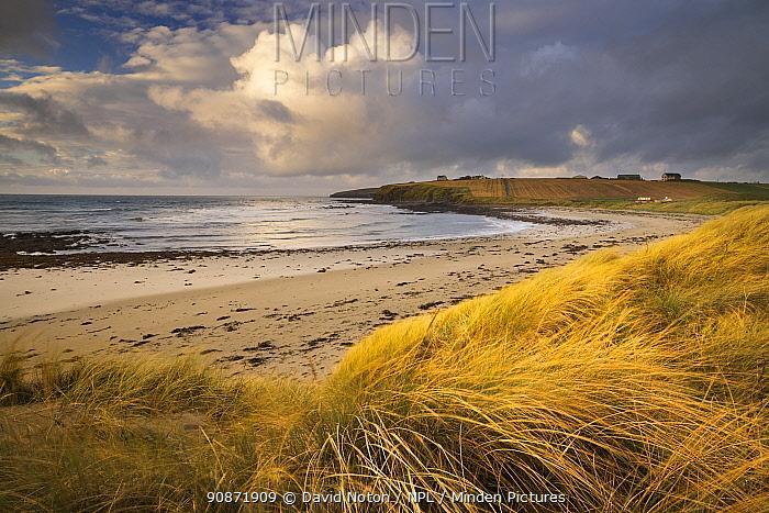 Taracliff Bay at dawn, Mainland, Orkney Isles, Scotland. October 2020.