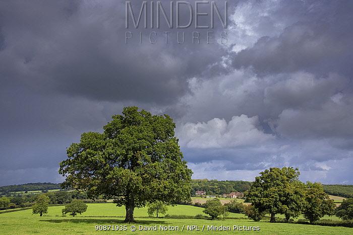 Storm clouds over Purse Caundle, Dorset, England, UK. August 2020.