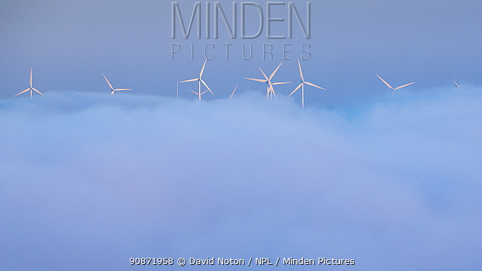 Wind turbines appearing above the mist in the Canon do Sil, Galicia, Spain. May 2018.