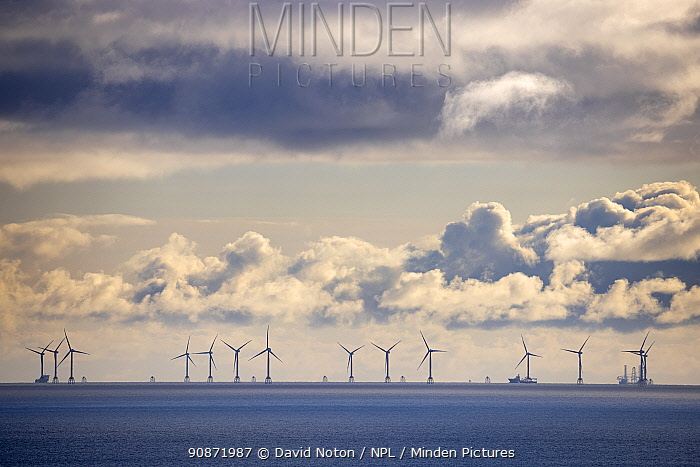 Beatrice Wind Farm in the North Sea off the Caithness coast, Scotland. October 2020.