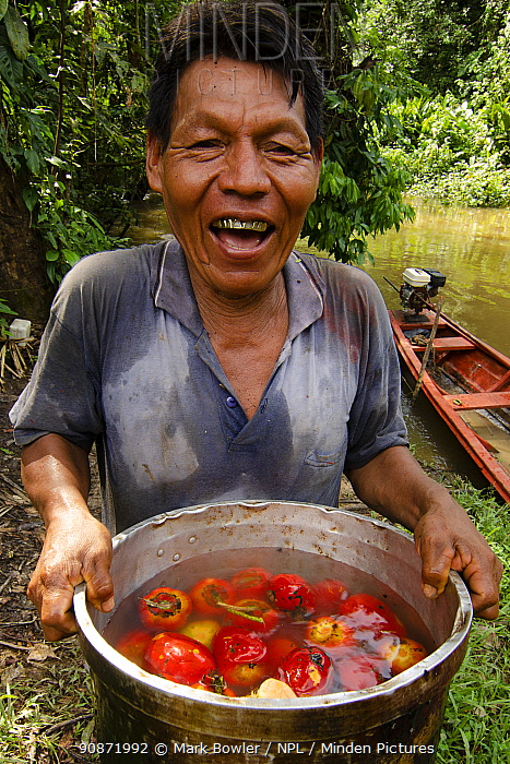 Woman with pan full of fruit, Maijuna Indigenous Community, Rainforest, Sucusari, Rio Napo, Loreto, Peru. January 2013.
