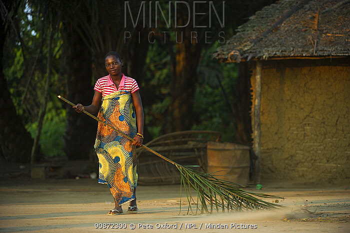 Woman sweeping with palm leaf, Republic of Congo (Congo-Brazzaville), Africa, June 2013.