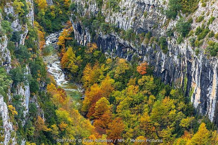 Escuain Canyon, autumn, Ordesa National Park, Pyrenees, Aragon, Spain.