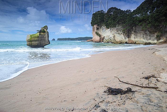Smiling Sphinx rock sea stack and beach, Mares leg cove, Cathedral Cove Marine Reserve / Te Whanganui -A-Hei, Coromandel, Waikato, North Island, New Zealand, July 2019.