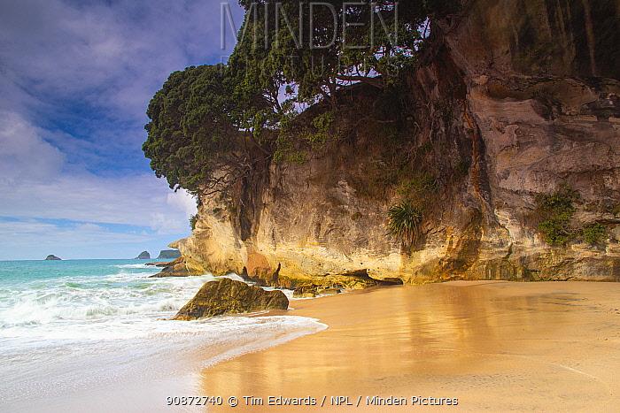 Beach and cliffs, Mares Leg Cove, Cathedral Cove Marine Reserve / Te Whanganui-A Hei, Coromandel, Waikato, North island, New Zealand July 2019.