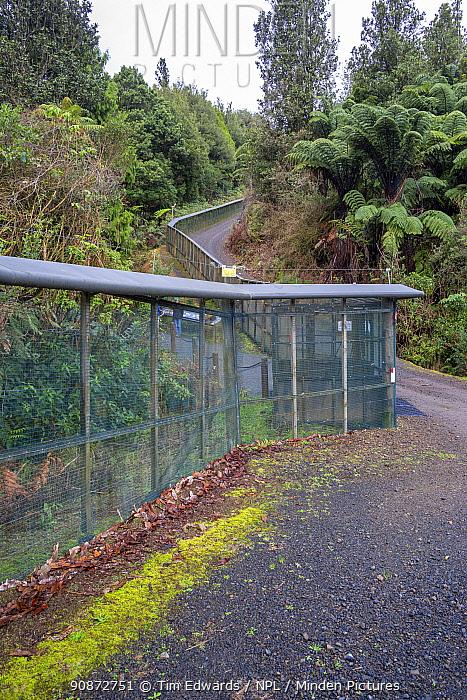 Predator proof fence east of Southern Enclosure entrance, Maungatautari Ecological Island Reserve, Waikato, North Island, New Zealand.