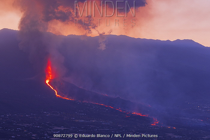 Volcanic eruption and lava flow, Cumbre Vieja Volcano. La Palma. Canary Islands. Spain. Europe. September 2021.