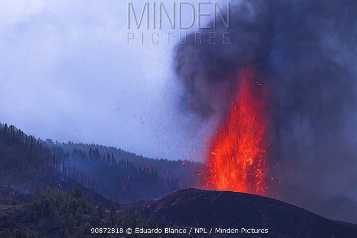 Volcanic eruption, Cumbre Vieja Volcano, La Palma, Canary Islands. Spain. Europe. September 2021.