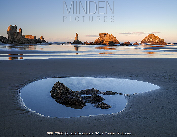 Oregon Coastal Seastacks catching the sunlight at low tide, with small rockpool in foreground in shadow, off Face Rock State Scenic Viewpoint, Bandon, Oregon, USA.