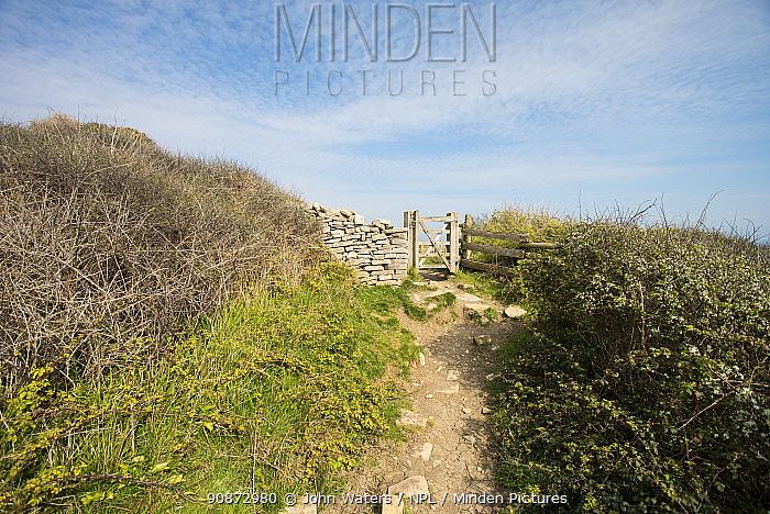 Coastal path with a gate through a wall, near Swanage, Jurassic Coast, Dorset, UK, April. Digital Original