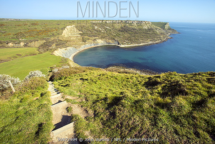 Scenic view of the Jurassic Coast from the Coast Path, overlooking Chapman's Pool with St. Aldelms Head in distance, near Worth Matravers, Dorsey, UK, April, 2021.