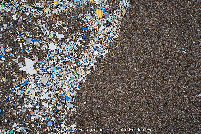 Plastic and microplastics covering the beaches, brought in by the winds and the tides, Canary Islands.