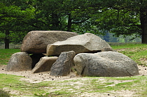 Dolmen, ancient Neolithic burial chamber from about 3,500 BC, Drenthe, Netherlands  -  Wil Meinderts/ Buiten-beeld