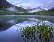 Fortress Mountain, Kannaskis Country, Alberta, Canada  -  Tim Fitzharris