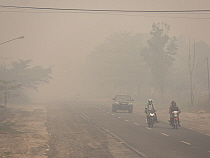 Motorcycles and car on road in dense haze caused by fire, set by humans to clear rainforest, Kumai, Central Kalimantan, Borneo, Indonesia. October, 2015