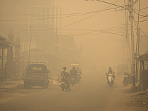 Motorcycles on road in dense haze caused by fire, set by humans to clear rainforest, Kumai, Central Kalimantan, Borneo, Indonesia. October, 2015